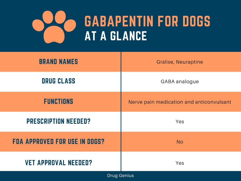 Chart explaining basics about gabapentin for dogs.