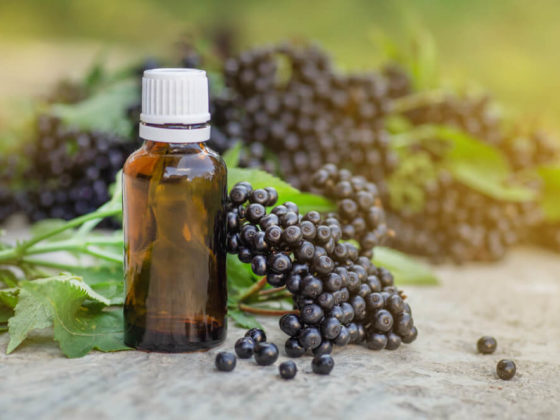 A brown bottle with a white cap next to dark purple elderberries with green leaves.