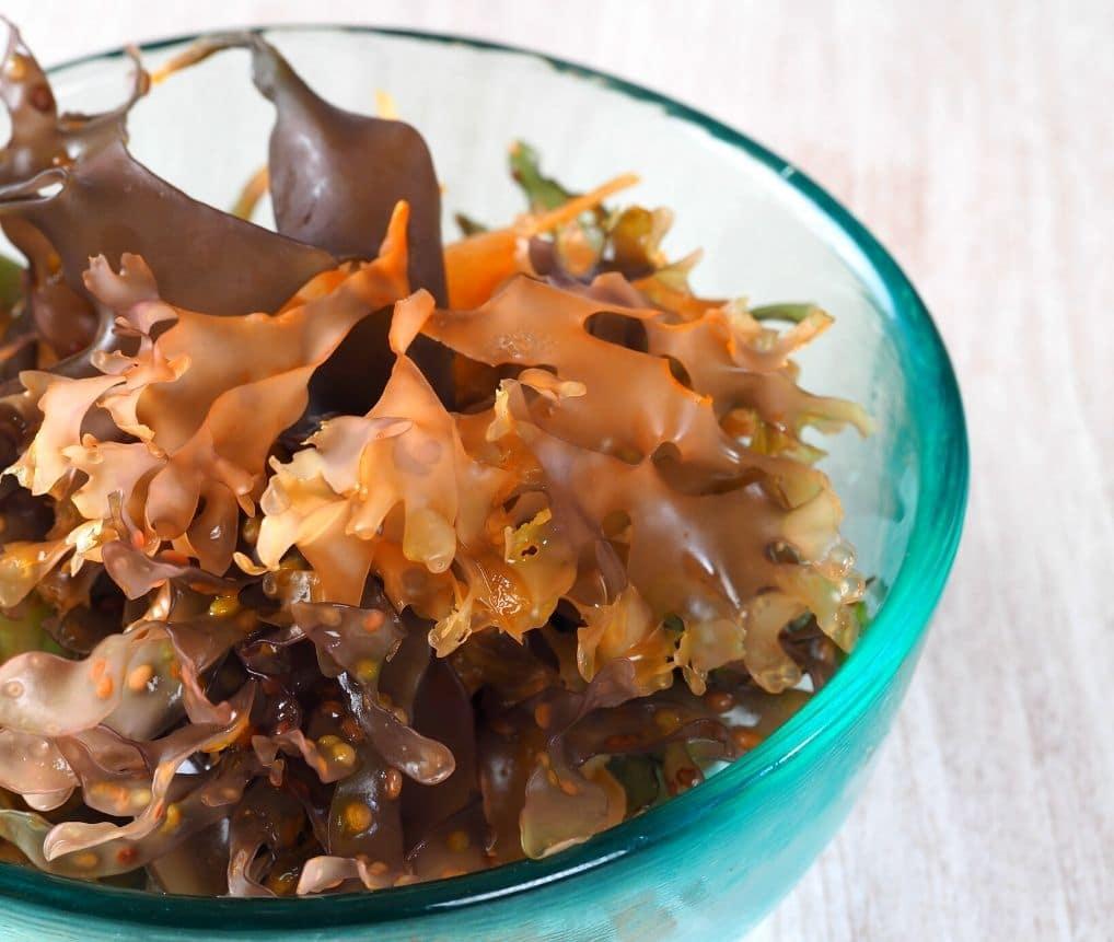 sea moss benefits for men