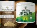 Best Lion's Mane Supplement